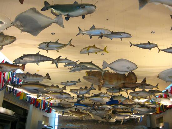 The Fishing Hall of Fame Has Lots  of Tall Stories
