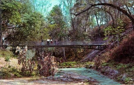 floridatraveler RAVINE GARDENS bridge