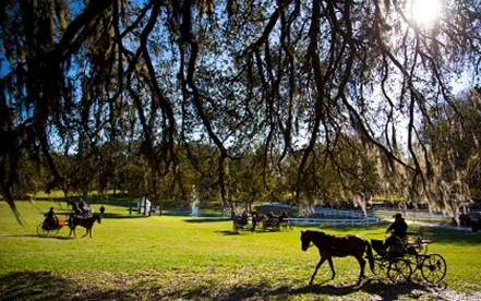 "The Grand Oaks Resort & Museum in Weirsdale, Fla., is known as ""America's Equestrian Resort"" complete with equine accommodations, equine events, RV and cottage lodging, an equine museum, gift shop and bistro."