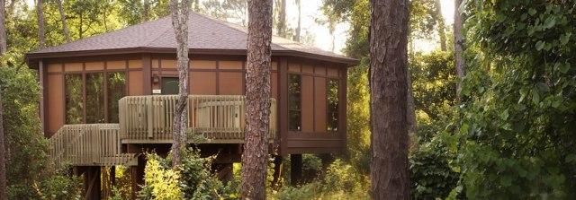floridatraveler saratoga treehouse-villas