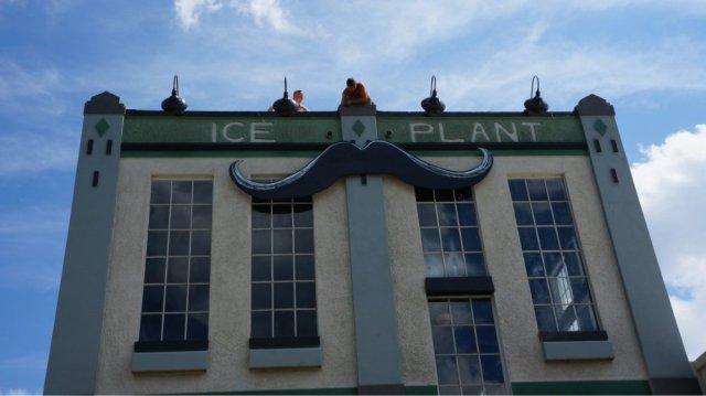 FLORIDATRAVELER the ice plant