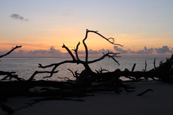 FLORIDATRAVELER big-talbot-island-state