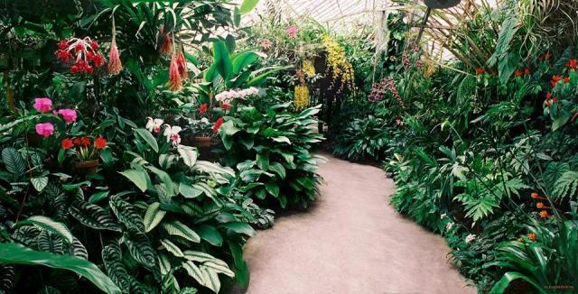 floridatraveler-marie_selby_gardens