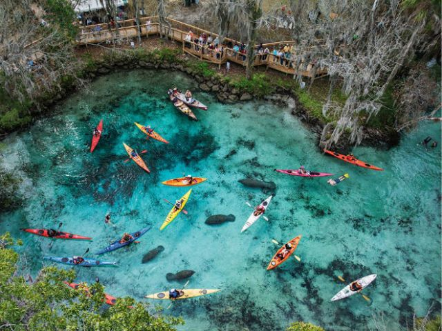 FLORIDATRAVELER kayak Blue-Springs