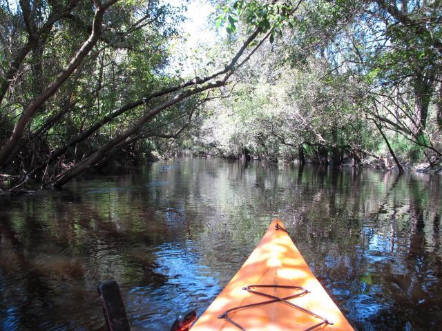 floridatraveler kayak LITTLE MANATEE