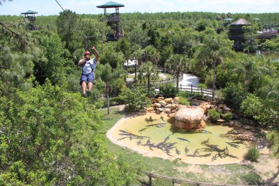 FLORIDATRAVELER GATORLAND zipline-over-the-alligators