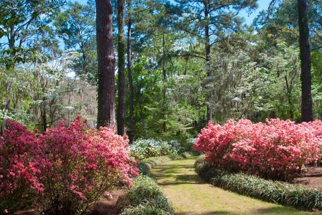 FLORIDATRAVELER Alfred-B-MacLay-Gardens