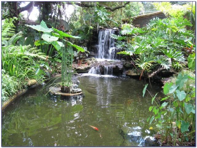 FLORIDATRAVELER marie-selby-botanical-gardens-florida