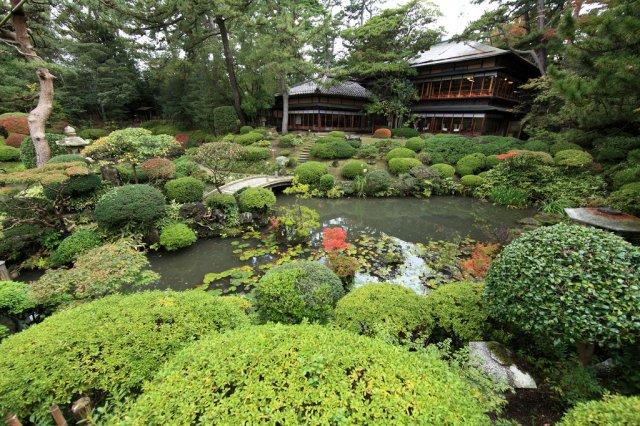 FLORIDATRAVELER monkami gardens