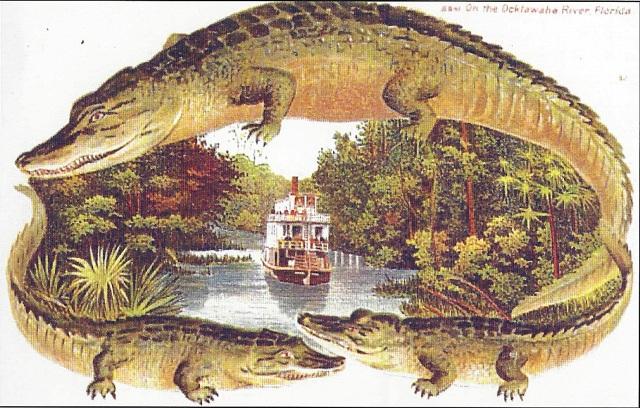 FLORIDATRAVELER astatula on Ocklawaha to Silver River