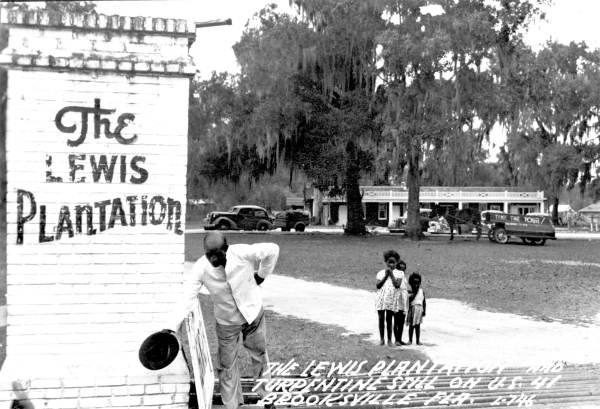 FLORIDATRAVELER the lewis plantation postcard