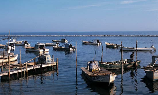 floridatraveler OYSTER BOATS in apalachicola bay