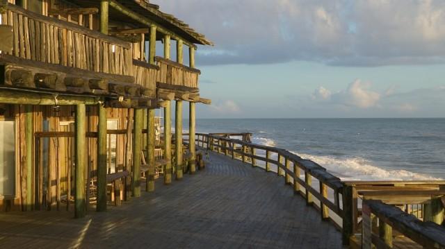floridatraveler FUNKY DRIFTWOOD Vero-Beach-61922
