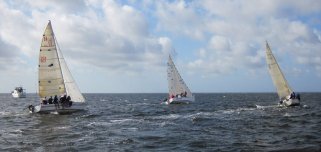 FLORIDATRAVELER charlotte harbor boat race