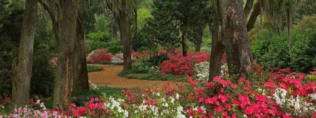 FLORIDATRAVELER bok-tower-gardens