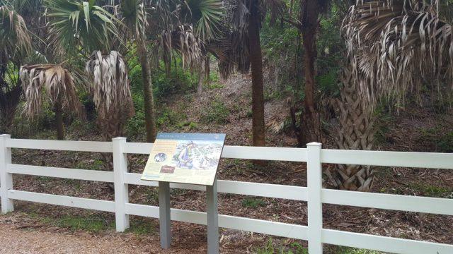 FLORIDATRAVELER Calusa trail pine island