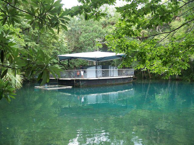 FLORIDATRAVELER Homosassa_Springs_State_Park_underwater observatory_obs01