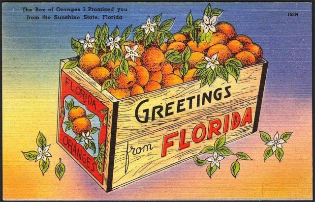 FLORIDATRAVELER food box-of-oranges-postcard